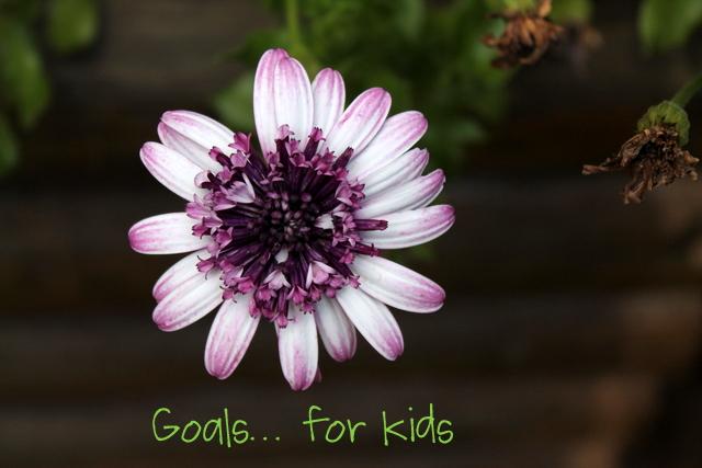Goals... for kids | www.OrganisingQueen.com
