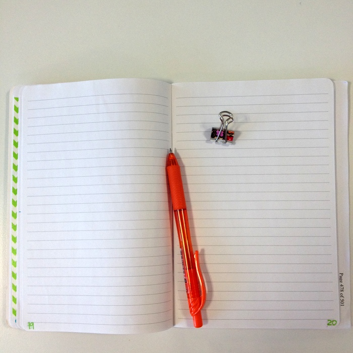 Bullet journal | www.OrganisingQueen.com