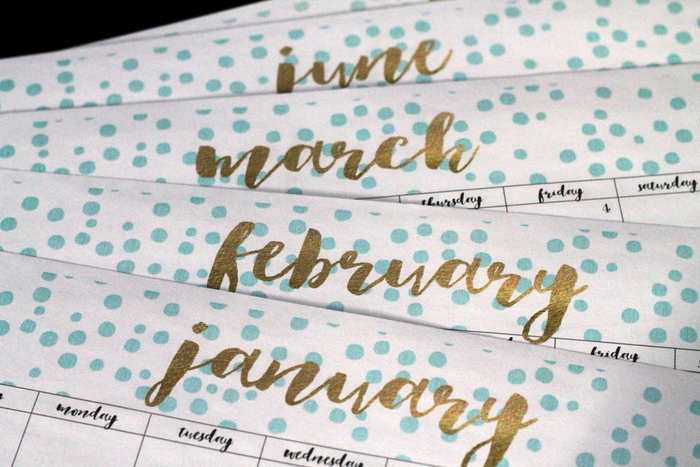 diaries-and-goals-best